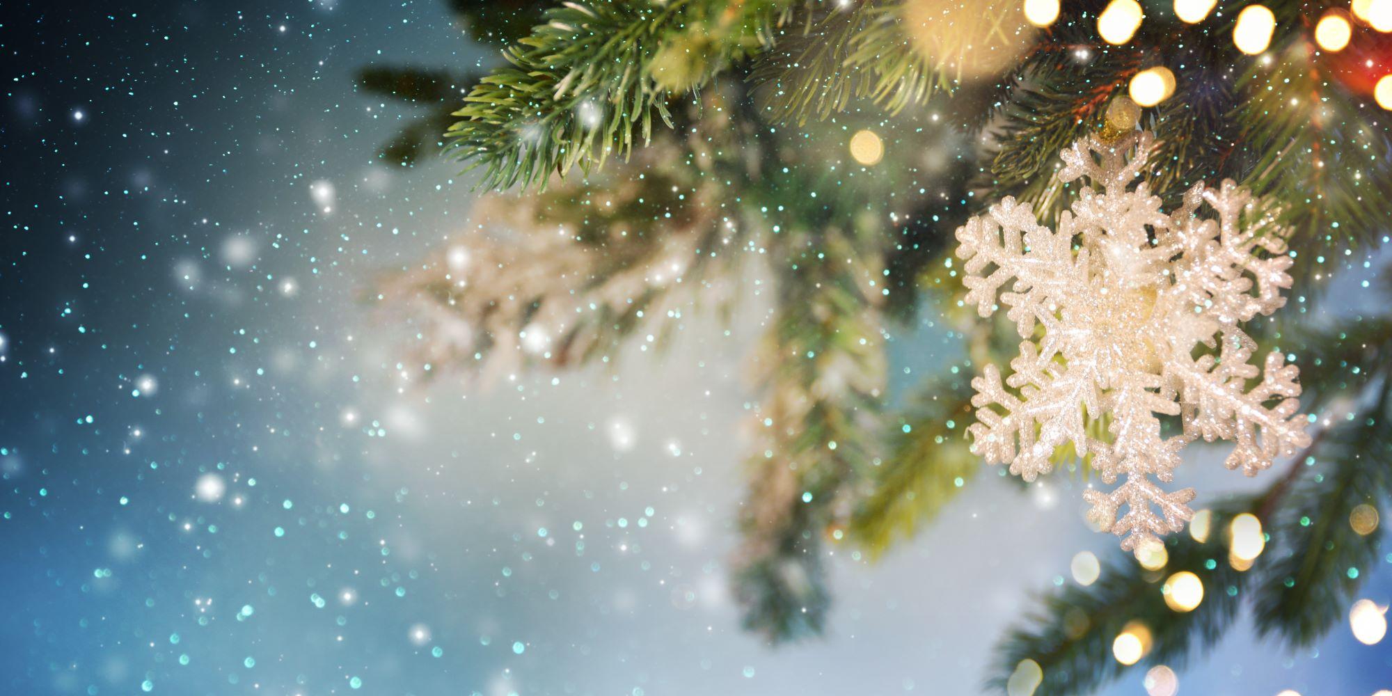 Weihnachtszeit – eine Auszeit inmitten des Wandels